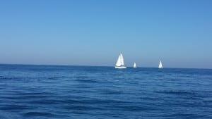 ים פלטה