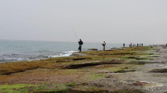 דיג חוף