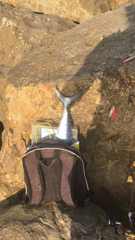 תיק הדיג של עידן