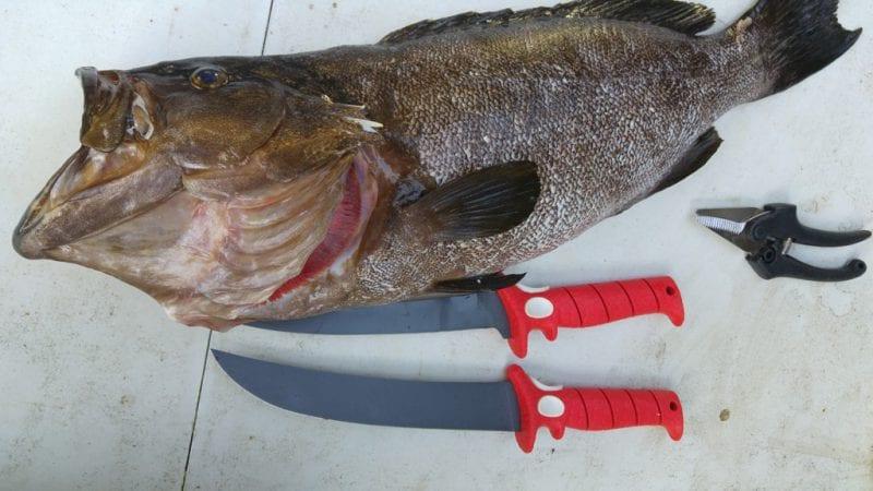 סכיני פילוט Bubba Blade