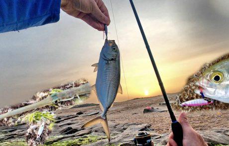 """Shraga Milon: """"דיג אולטרה לייט עם אקשן 🐟 ותפיסה מעניינת בבוקר שרבי"""""""