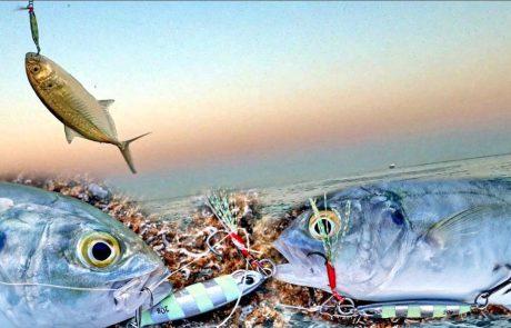 """Shraga Milon: """"אקשן טרחונים ?, 5 זריקות 5 דגים ? עונת 2021 התחילה."""""""