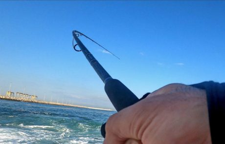 "Shraga Milon: ""דיג בוקר עם דגים 🐟 וכרישים🦈"""