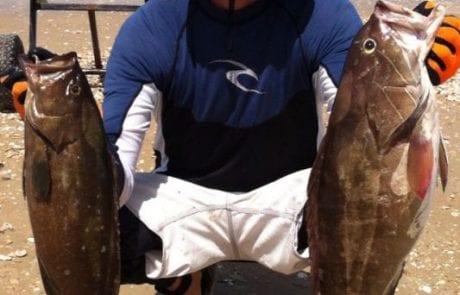 אופיר: סוף כל סוף יציאה לחודש יוני בדיג מקיאק