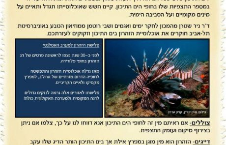 זהירות פולש! חוקרים מהמכון לחקר ימים ואגמים ומאוניברסיטת תל אביב מבקשים את עזרתכם
