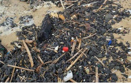 """המפרץ הצפוני: """"מבצע להחזיר לים אהבה ולנקות את רצועת החוף של נהריה"""""""