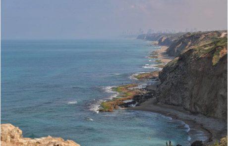 הסתיים איסור דיג לוקוסים בים התיכון בתקופת הרבייה – 2019
