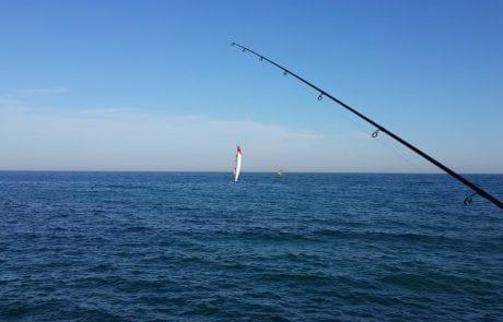 זירזור – החשיבות בהטלה – מאמון עודה, הנצרתי מס' 1 (FISHING MAGAZINE)