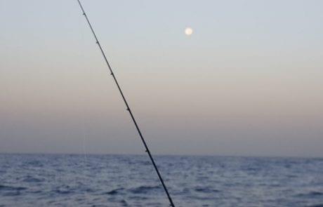 """חיים נחמיאס: """"חברים יקרים, היכן כדאי לדוג באילת ובאיזו שיטה?"""""""