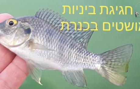 """ליאור בן חיים-דייג: """"זרזור דייג בכנרת היפה"""""""