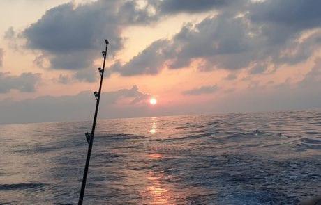 """איילו: """"זבקיקו בים – תחזית סופ""""ש"""""""