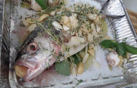 """אלעזר דהן: """"מתכון של שף לדג טרכון"""""""
