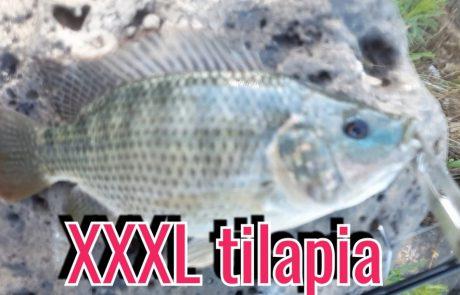 """ליאור בן חיים: """"תפיסה של 2 דגים על דמוי אחד מטורף אחלה יום דייג תפסתי"""""""