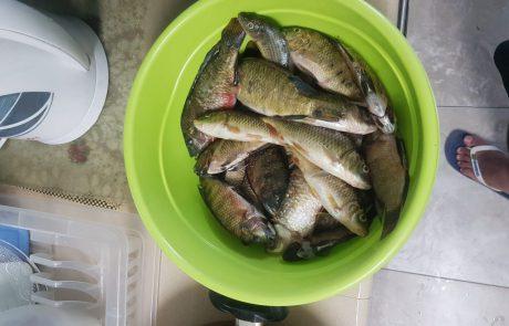 "דוד אדרי: ""דייג באגם ראשון לציון יום שישי"""