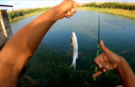 """ליאור גכמן: """"עוד יום מהנה של דייג מגוון ומוצלח עם החברים"""""""