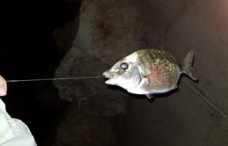 """בועז הדייג: """"לילה של גלים מטורפים ודג גדול"""""""