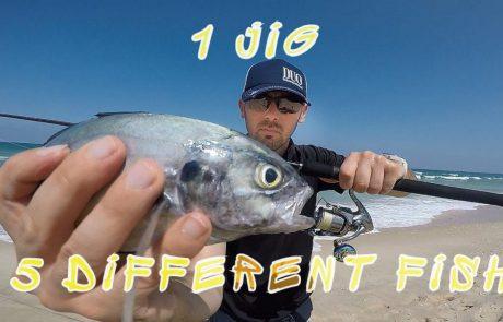 "Lionel Bokobza Fishing: ""יציאות שונות גיג אחד מספר דגים שונים שיהיה לנו שנה טובה אמן ‼️רק בריאות לכולם ‼️"""