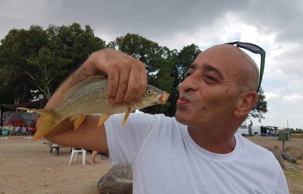 """נחום רשתי: """"חוף האון כינרת רולר עם קפיץ יש דייג יפה. """""""