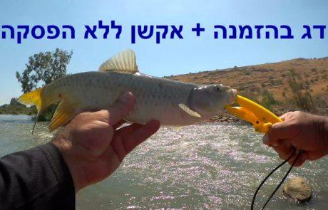 """ליאור בן חיים: """"""""דג בהזמנה + אקשן של דיג"""""""""""