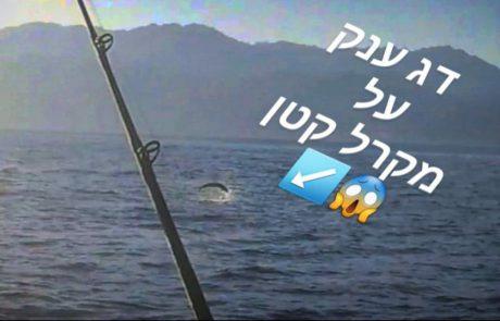 """עידן מזרחי: """"מה דג פתיון קטן יכול לתפוס ?אילת ? דייג ישראל 2021"""""""