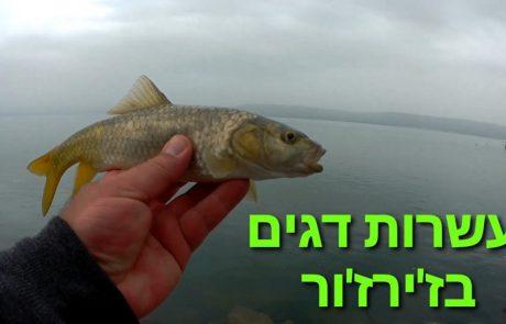 """ליאור בן חיים: """"** עשרות דגים בז'ירז'ור **"""""""