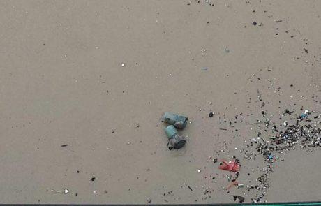 """בגלל הסערה: עשרות מרעומים נפלטו לחופי ת""""א (YNET)"""