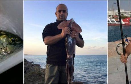 פוסטים של תפיסות דיג מיוחדות בקבוצת מפגש הדייגים בפייסבוק
