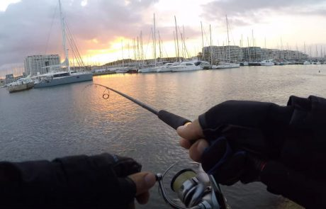 """FishingAddicts: """"דייג מול רתיחות מדהימות, היה כייף לפצח את זה!"""""""