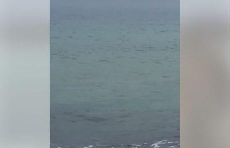 """מירון שמאי: """"בוקר טוב חברים שלי יום רביעי כמה כיף לפתוח את הבוקר בים…"""""""