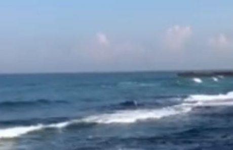 """מירון שמאי: """"בוקר טוב לכולם יום רביעי המשך יום טוב לכולם"""" (מצב הים)"""
