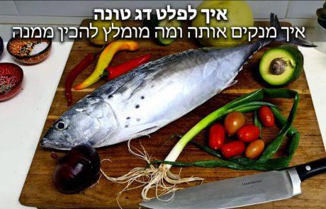 "FishingAddicts: ""איך לפלט דג טונה – דגתם או קניתם דג טונה? איך מנקים אותה ומה מומלץ להכין ממנה – המדריך המלא חלק א'"""