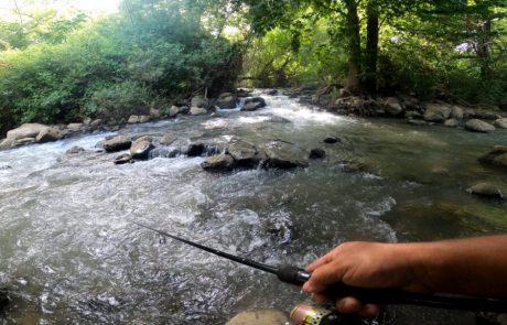 """נפתלי דייג במים מתוקים: """"נהר הירדן כמו שעדיין לא ראיתם מקומות מטורפים ביופים וכמובן דגים נמצאים בכל מקום"""""""