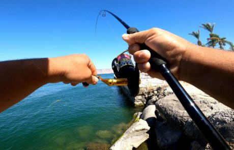 """נפתלי דייג במים מתוקים: """"יום דייג בכנרת מלחמה עם דג ענק"""""""