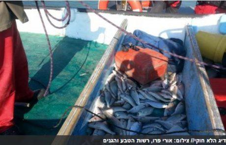 עונשים כבדים לדייגים שדגו בשמורת טבע (ישראל היום)