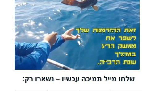נשארו עוד 24 דקות | תמוך עכשיו בהחלטת פקיד הדיג – זאת ההזדמנות שלך לשפר את ממשק הדיג במהלך עונת הרבייה