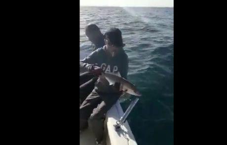 אלוני מצוות DEEP BLUE דייג ספורטיבי אמיתי משחרר בייבי אינטיאס מתחת לגיל רבייה