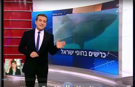 """כרישים בחופי ישראל – כתבתו של דני קושמרו """"אולפן שישי"""" ערוץ 2"""