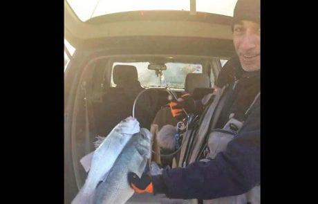גילי מגילה: אחרי שלושה שבועות בלי דיג לקבל שני לברקים מי צריך יותר בוקר טוב עולם !!!