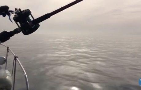 רמי עם עדכון LIVE מהים – מרכז (24/01/2017)