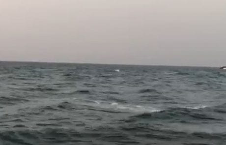 """מירון שמאי:""""אחר הצהריים טובים הים מתחיל לעלות…"""""""