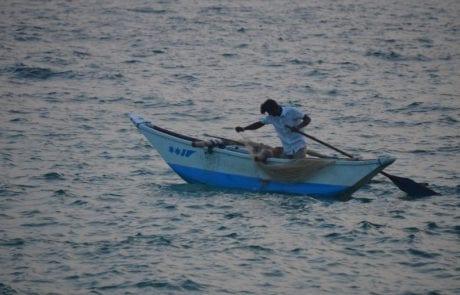 """סופ""""ש כמו בלדה – תחזית לדייג החובב"""