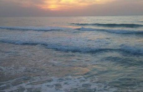 הרצליה: מייבאים חול מתורכיה להזנת חופי הים (mynet)