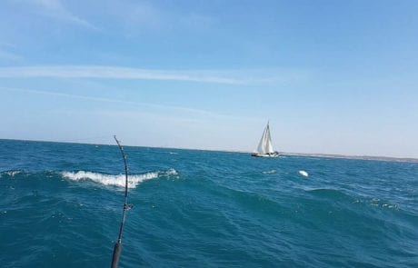 צוות אמבר: כשהגלים מתחזקים החזקים מתגלים…