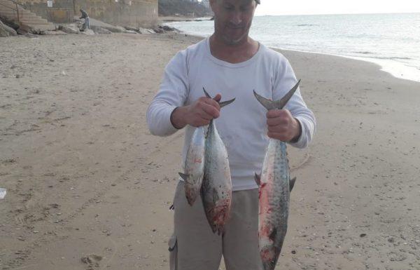 """ערן קורן: """"יום רביעי האחרון אני וגיסי, היה ים מושלם,טרולינג מסירה, חוף בלו ביי בנתניה. דגים מושלמים לכבוד שבת קודש! הקרדיט לבורא עולם!"""""""