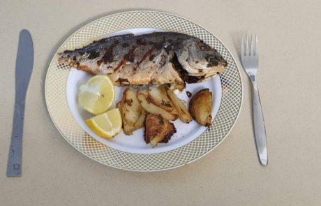 """ליאור בן חיים : """"איך להכין דג שלם בתנור"""""""