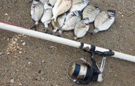 """רונן בן דהן: """"דיג סרגוסים בפילוטה אחרי הסערה"""""""