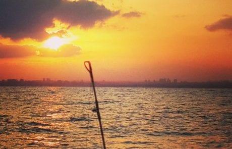 הסתיים איסור הדיג בים התיכון בתקופת הרבייה – 2018