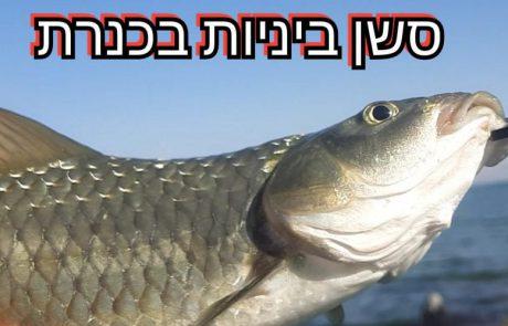 """בן חיים ליאור-דייג: """"דייג אולטרה לייט בכנרת מלא ביניות וכיף"""" – C & R"""