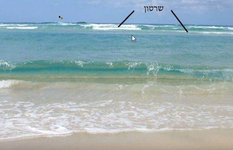 איפה כדאי לעבוד בחוף חולי ולמה דווקא שם?
