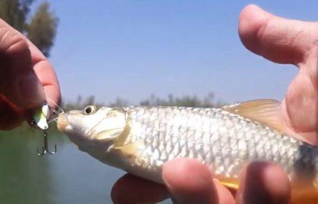 """ליאור בן-חיים: """"יום מלא דגים-הכל עבד!"""""""